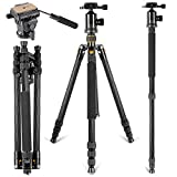Neewer Carbon Fiber 66 inches/168 centimeters Tripod Monopod with 360 Degree Ball Head,Fluid Video Head,1/4 inch Quick Shoe Plate,Bag for DSLR Camera Camcorder up to 26.5 pounds/12 kilograms golden