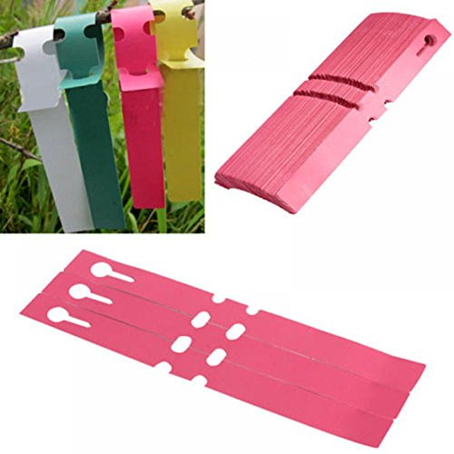 ORYOUGO 100 Pcs 6 Colors Plastic Plant Tree Tags Nursery Garden Lables Waterproof Wrap Around Hanging Tags Nursery Garden Stakes Large Writing Surface(Rose Red)