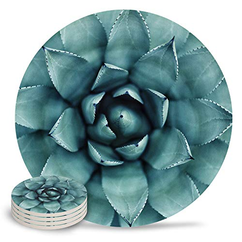 Coasters for Drinks 4-Piece Absorbent Stone Ceramic Coasters NO Holder Natural Plant Green Succulent Agave Coaster with Cork Backing, Prevent Furniture from Dirty and Scratched