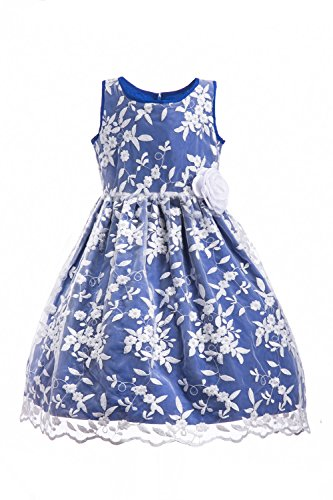 Emma Riley Girls' Sleeveless Floral Embroidered Mesh Pleated A-line Princess Party Dress, Blue Embroidery, 14 ()