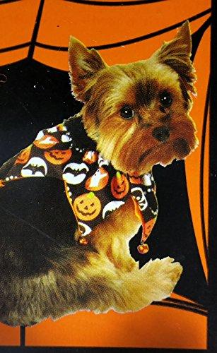 Satin Halloween Dog Scrunchie -