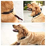 """Taglory 18-26"""" Genuine Leather Dog Collars/Military Grade Dog Training Collar for Large Huge Dogs/Soft and Durable Real Leather/Brown"""