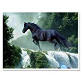 EverTrust(TM) New Fashion Diamond Embroidery Animals Horse Modern Full Square Resin Paintings Handmade Cross-stitch Kits Home Decoration