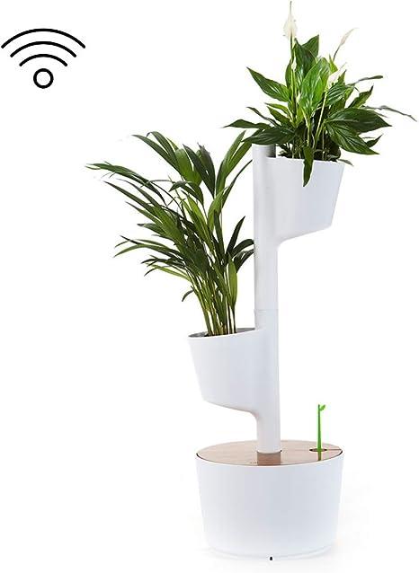 Citysens - Macetero Vertical con Autorriego Inteligente, Blanco, 2 ...