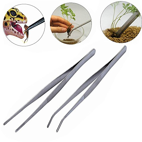 HMILYDYK 10INCH Stainless Metal Stright and Curved Nippers 2PCS Tip Tweezers for Plant Grass Backyard Reptile Snake Feeding Forceps Tongs