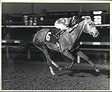 1987 Press Photo Jockey Kenny