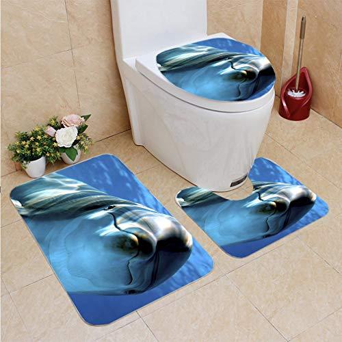 3 Sets of Bathroom Home, Bathroom Carpet + Contour pad + lid Toilet seat,Delfino, Flannel -