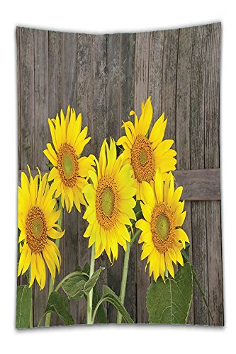 Beshowereb Fleece Throw Blanket Sunflower Decor HelianthuSunflowerAgainst Weathered Aged Fence Summer Garden Photo Print for Bedroom Living Room Dorm Brown Yellow and - Gardens Victoria Pictures