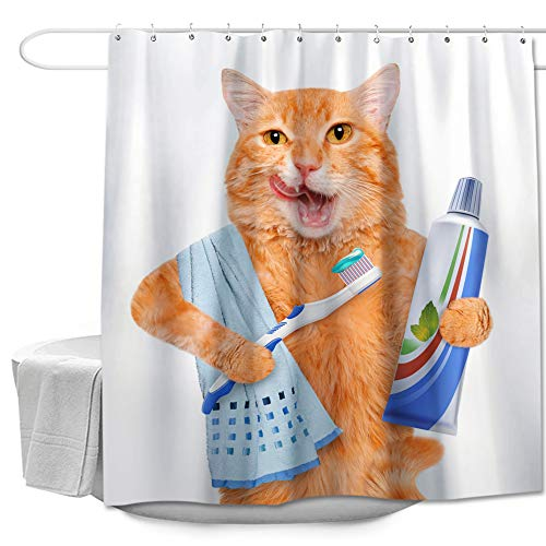 """Fat Cat Brushing Teeth Shower Curtain Made of 100% Polyester Fabric Machine Washable Waterproof Durable Rust Proof Grommets with Hooks 72""""x72"""""""