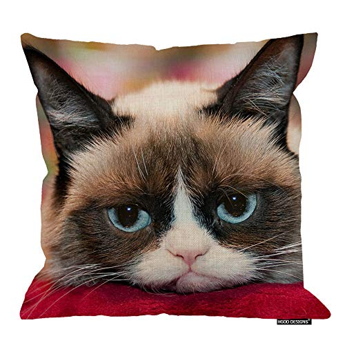 HGOD DESIGNS Cute Grumpy Cat Zippered Pillow Cases Soft Confortable 18X18 Inches Cotton Linen Pillow Cover(Twin Sides) (Best Of Grumpy Cat)