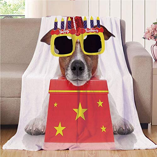 Blanket Comfort Warmth Soft Cozy Air Conditioning Fleece Blanket Perfect for Couch Sofa Or Bed,Birthday Decorations for Kids,Party Dog with Sunglasses and Cone Hat Boxes Stars Image,Red and Yellow,5