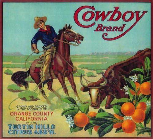 Tustin George Geo Washington #2 Orange Citrus Fruit Crate Label Art Print
