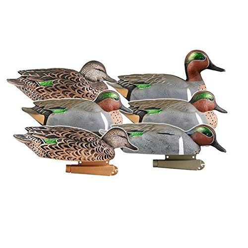Teal Green Winged Duck (Avery Outdoors 73123 PG Green winged Teal (1/2 Dozen) Hunting Decoy Accessories)