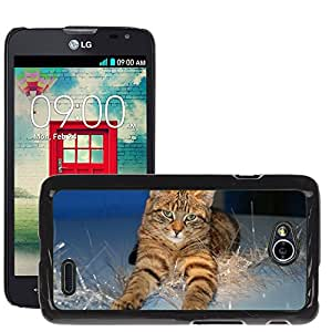 Hot Style Cell Phone PC Hard Case Cover // M00111300 Cat Christmas Christmas Decoration // LG Optimus L70 MS323