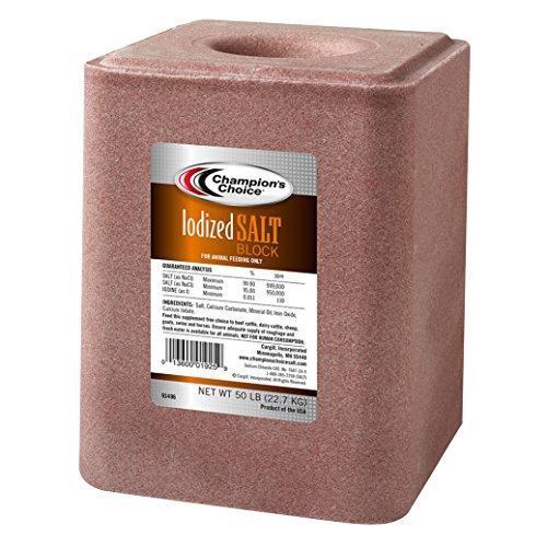 Iodized Salt Block 50lb ()