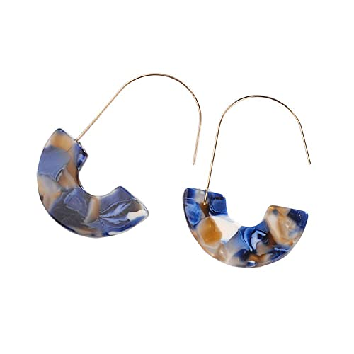 3681cb87c Amazon.com: Acrylic Earrings Statement Tortoise Hoop Earrings Resin Wire  Drop Dangle Earrings Fashion Jewelry for Women 2 Pairs: Jewelry