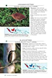 A Photographic Guide to the Birds of