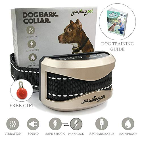 Best Dog Bark Collars