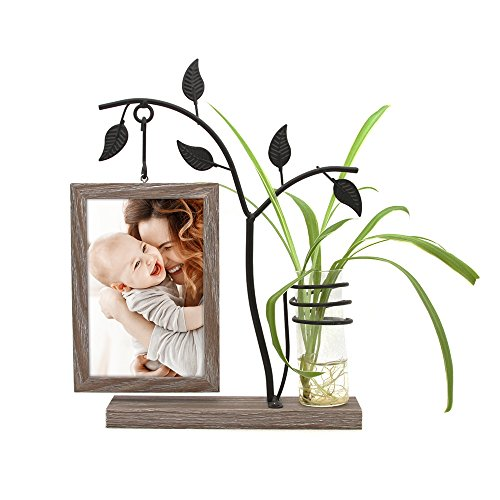 Afuly Unique Picture Frame 4x6 Rustic Wooden Family Photo Frames for Desk with Decorative Vase and Metal Tree Plant Art Wedding Gifts