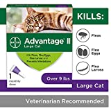 Flea Prevention for Cats - 5-9 lb - 1 dose - Advantage II