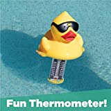 GAME 13901-BB Derby Duck Pool and Spa Thermometer