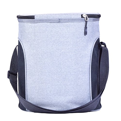 Avalanche Hazen on the Go Cooler Lunch Bag Tote Travel, Gray, One Size by Avalanche (Image #1)