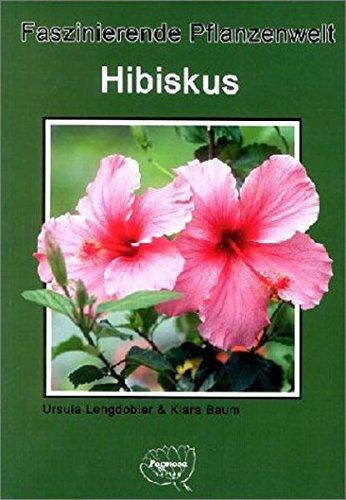 Hibiskus: Faszinierende Pflanzenwelt