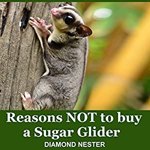 Reasons Not to Buy a Sugar Glider Audiobook