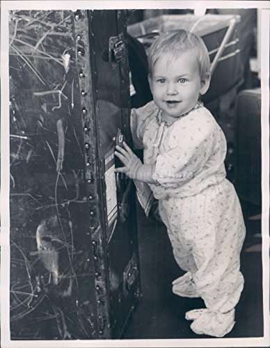 1956 Photo Eric Remole Baby Tries Move Luggage Cute Vintage (Vintage Stamped Luggage)
