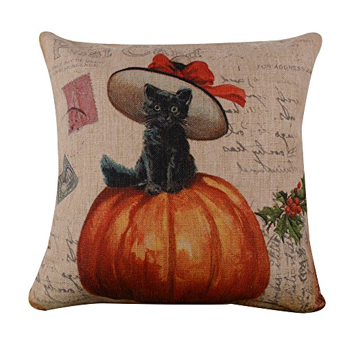 Black Kitty Sitting on Pumpkin Cushion