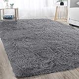 Soft Modern Indoor Large Shaggy Rug for Bedroom