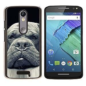 Plott Terranova Perro Negro- Metal de aluminio y de plástico duro Caja del teléfono - Negro - Motorola Droid Turbo 2 / Moto X Force