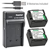 Kastar Battery (X2) & Slim USB Charger for Panasonic VW-VBG070, VW-VBG130, VWVBG260 and SDR-H40, SDR-H80 Series, HDC-HS700, TM700, HS300, TM300, HS250, SD20, HS20, HDC-SDT750 Camcorders etc.