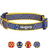 Blueberry Pet 10 Patterns Gold Metallic Thread Triangle Royal Blue Dog Collar, Large, Neck 18''-26'', Adjustable Collars for Dogs