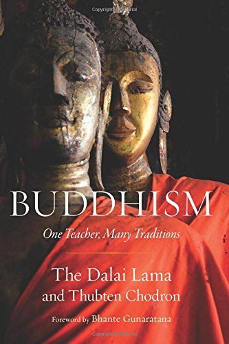 Download Buddhism: One Teacher, Many Traditions pdf