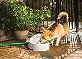 PetSafe Drinkwell Everflow Indoor/Outdoor Pet Fountain