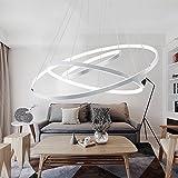 RainierLight Modern White Led 3 Rings Ceiling Lamp Adjustable Bright Pendant Light Electroplate Finish