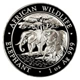 2013 African Wildlife Elephant Silver One Ounce Coin by smyrnacoin