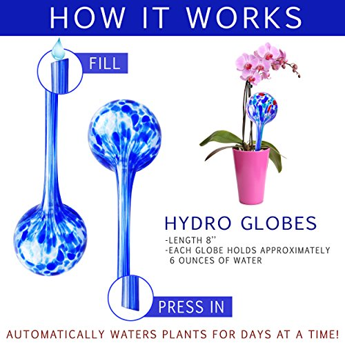 Gardening Solutions Hydro Globes Mini Automatic Watering Bulbs, 4 Piece Deluxe Set