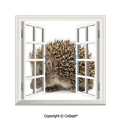SCOXIXI Open Window Wall Mural,Small Cute Mammal with Spiked Hair on Its Back and Sides Wildlife Photography Decorative,for Living Room(25.86x22.63 inch)