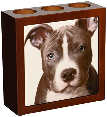 3dRose American Pit Bull Terrier Puppy Pen Holder Image Tile, 5-Inch