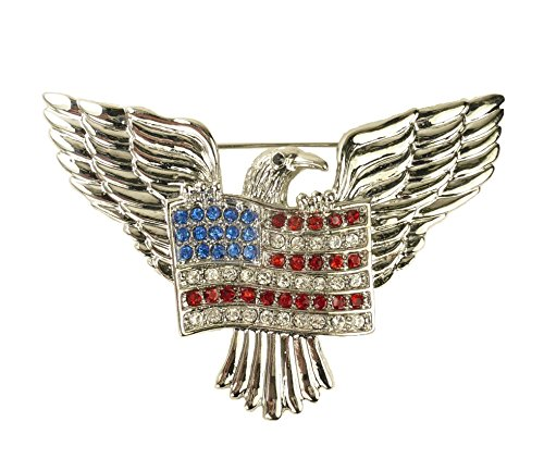 For Love of Country American Eagle and Flag Pin Brooch