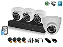 HDView 9CH Tribrid: 8 Channel DVR + 1 Channel NVR, HD 4-in-1 (TVI/AHD/Analog/IP) DVR Kit, with 1TB HDD, 4 x 2.4MP 1080P infrared security cameras Package System, Surge-Protection