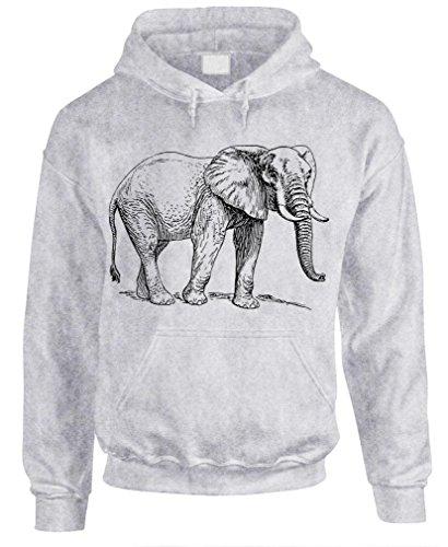 ELEPHANT pachyderm ivory endangered phunt