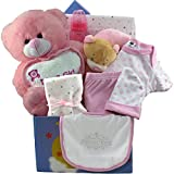 Art Of Appreciation Gift Baskets Baby Girl Gifts