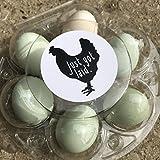 Cute Just Got Laid, Egg Carton Stickers, Hobby Farming, Duck Eggs, Chicken Eggs