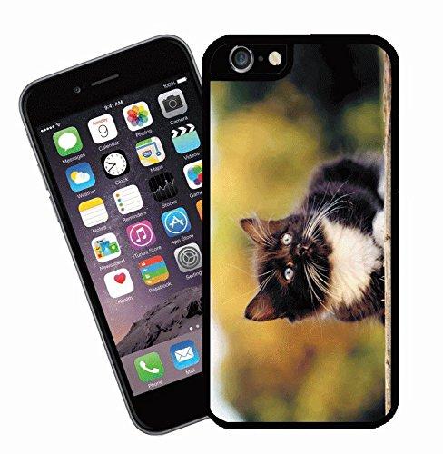 Katze Telefon Fall, design 18–für Apple iPhone 6–Cover von Eclipse Geschenk Ideen