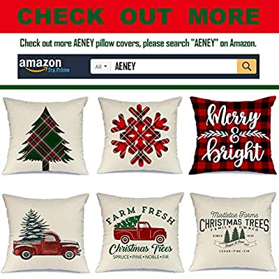 AENEY Christmas Pillow Cover 18x18 for Couch Red and Black Buffalo Check Plaid Quote Believe Throw Pillow Farmhouse Decorations Home Decor Xmas Decorative Pillowcase Faux Linen Cushion Case Sofa