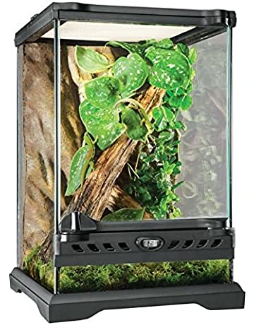 Amazon Com Terrariums Reptiles Amphibians Pet Supplies