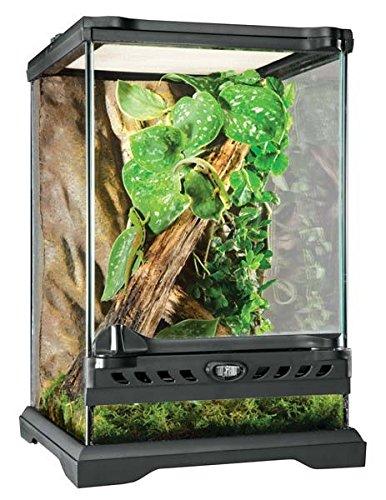 Exo Terra Glass Natural Terrarium Nano/Tall - 8 x 8 x 12 Inches by Exo Terra